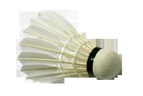 Badmintonclub de IJssel